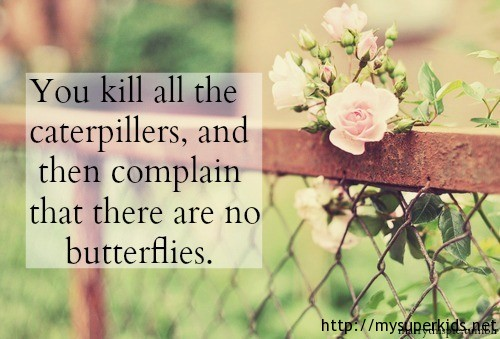 You-kill-all-the-caterpillars
