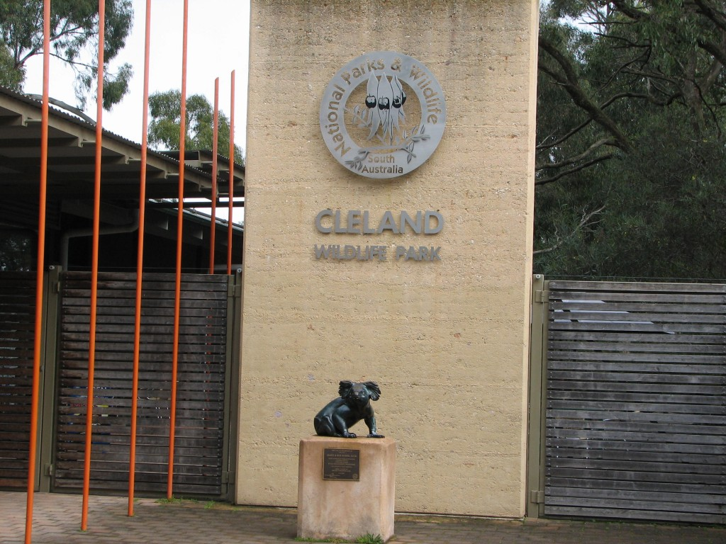 KANGAROO KOALA